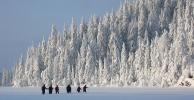 Over Oppkuvvannet, og inn i eventyrskogen. (Foto: Nina Didriksen)