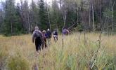 De brave LT-damer forserer myra ved Jomfruputten. Foto: Ragnhild Krogvig.