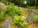 Hagen på Solåsen (Foto: Anne Marie Torgersen)