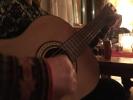 Toril dro i gang gitaren og sølvstrupene sang om både busk og kratt på Hovedøen