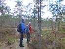 Veldig fint turterreng i Sørmarka (Fotot: Anne Marie)