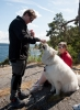 Hundemating (Foto: Rine G. Carlsen)