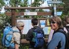 Solbrilleligaen leser om kyststien: Fra venstre Jorun, Rine, Vigdis og Beri