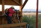 Turleder speider etter fugler. Foto: Silje