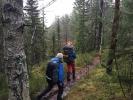 I fint driv på en sti et sted i Lillomarka en tåkete lørdag i november 2014. (Fo