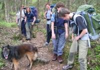 I småkrunglete skog på vei inn, f.v. Willy, Marianne, Cathrine, Helga, Anette og
